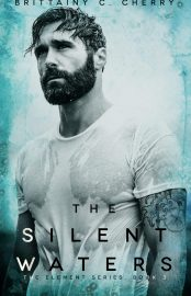 The Silent Waters - Elements Vol 03 - Brittainy C. Cherry